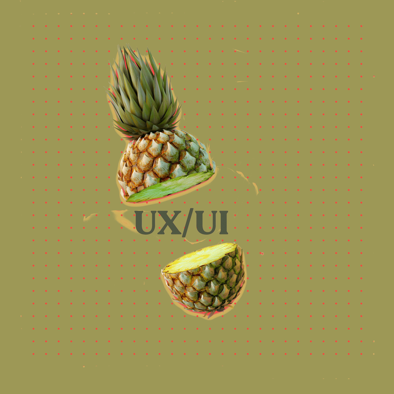 UX 2 (1)